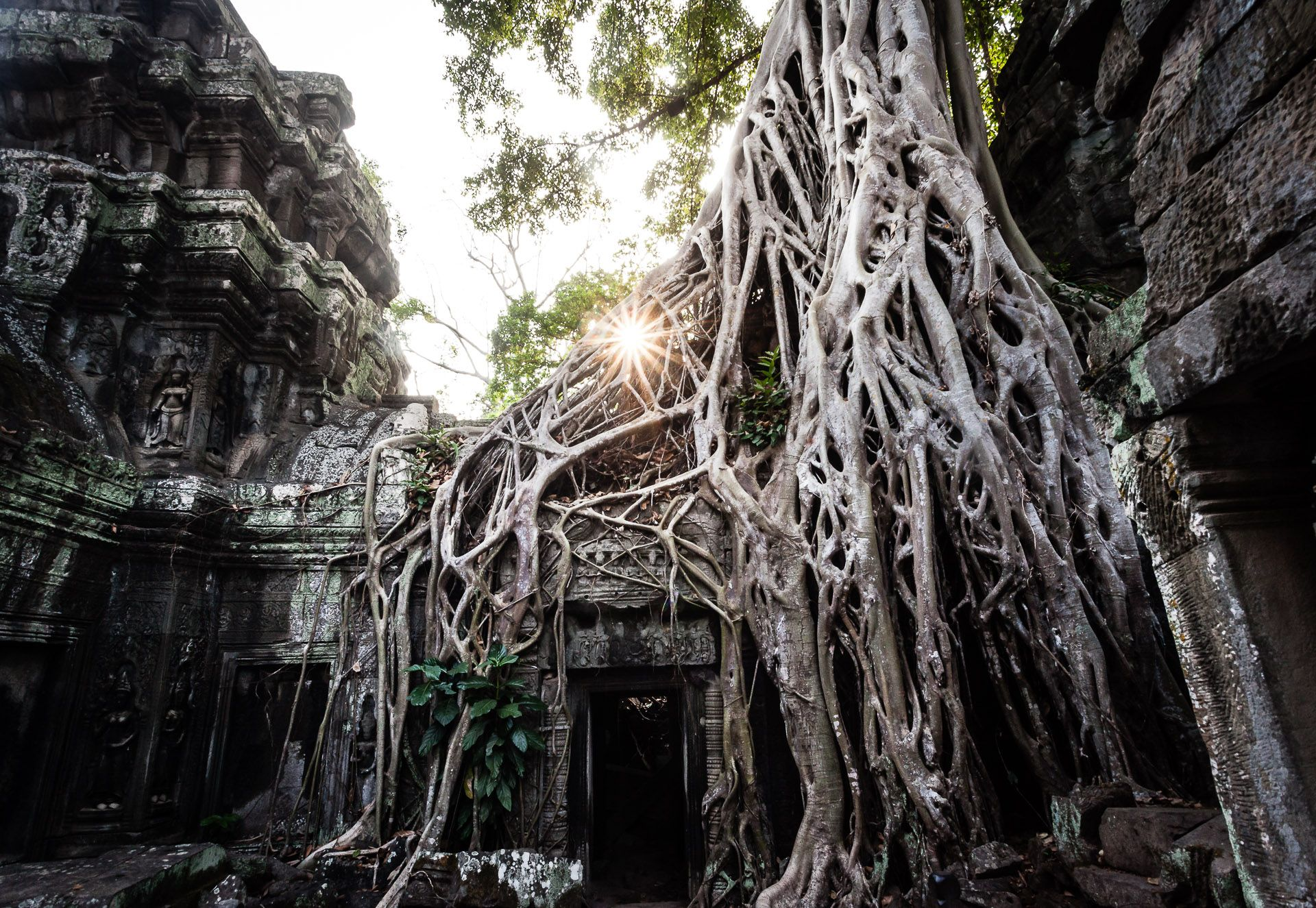 Temples of Angkor with a photographer (morning)